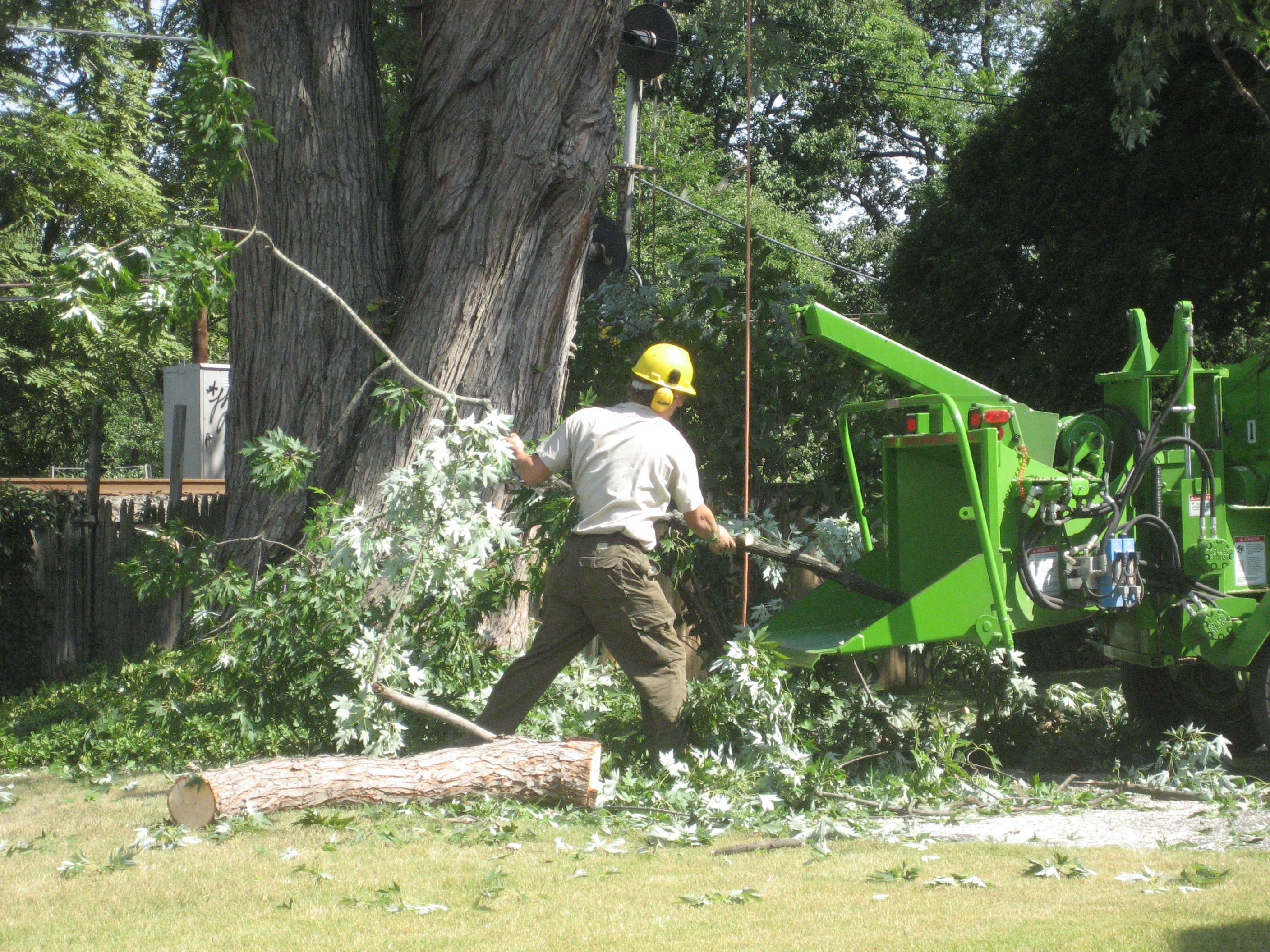 How Recycling Trees Into Mulch Gives Life To Other Trees Chipping Wood