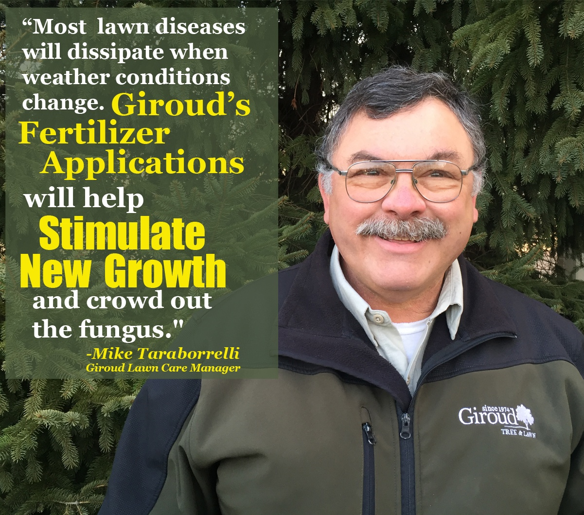 2018-Lawn-Fungal-Diseaseas-You-Need-to-Watch-Out-For-Mike-T-1