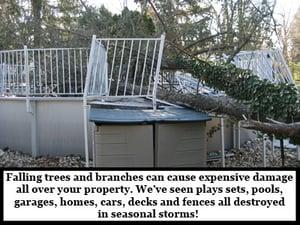 Catastrophic-Storm-Damage-tree-on-pool