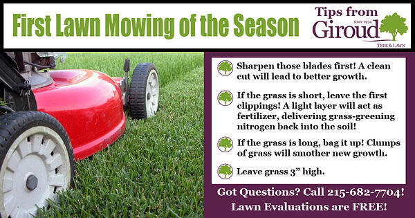 First Mow of the Season-Tips from Giroud