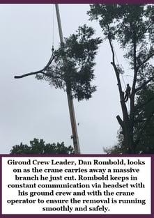 Hubspot-crane