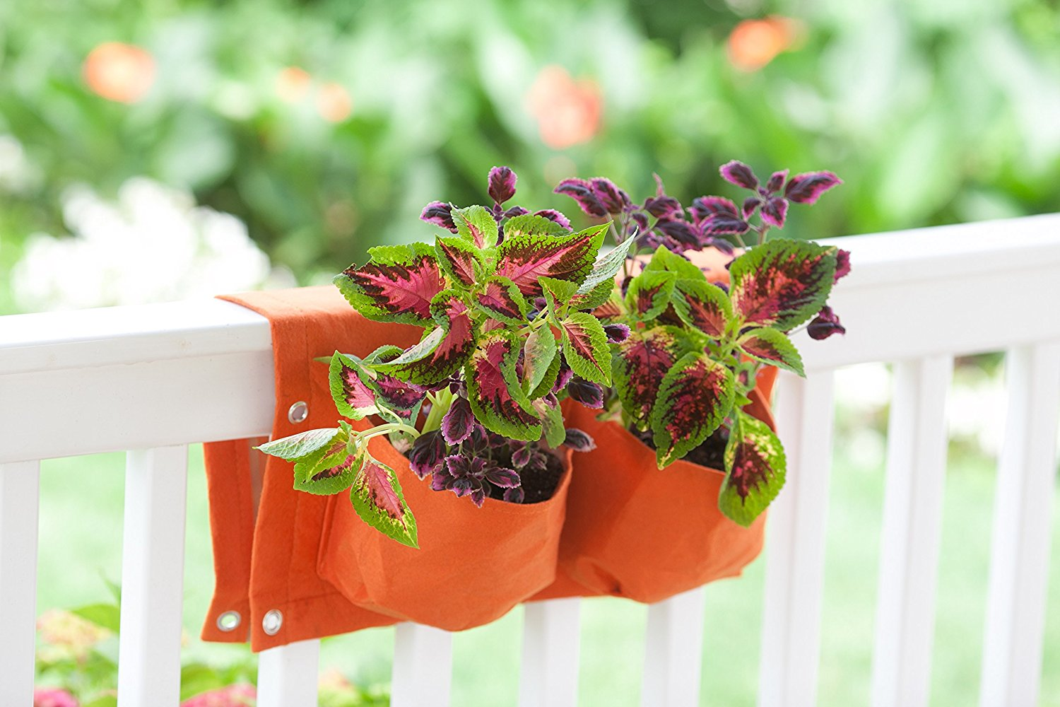 Gifts for Tree and Garden Enthusiast Rail Planter.jpg
