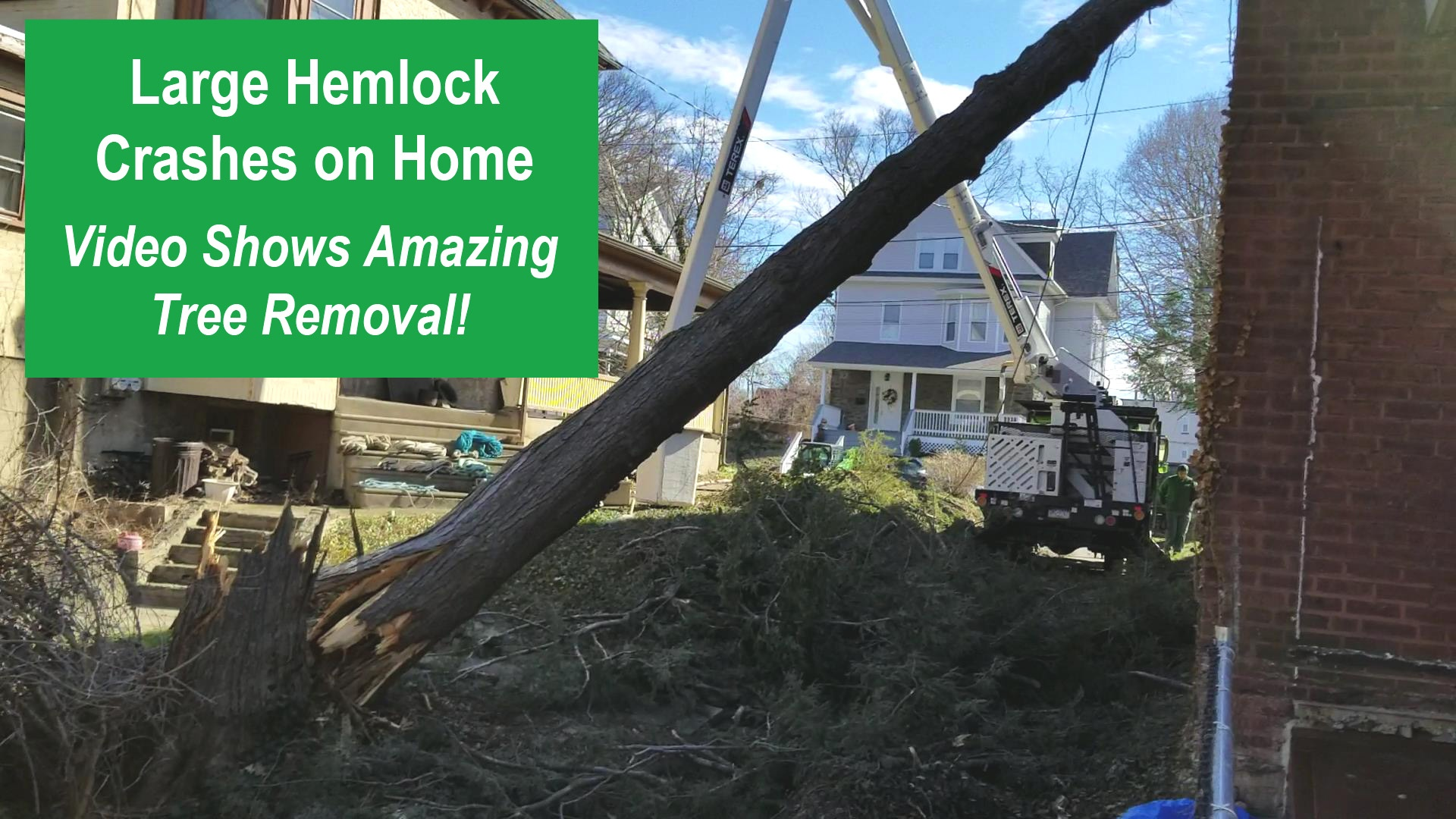 Large Hemlock Crashes Down on Home, Video Shows Amazing Tree Removal