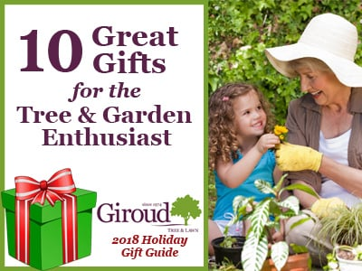 2018-10-Great-Gifts-for-the-Tree-and-Garden-Enthusiast-Hubspot