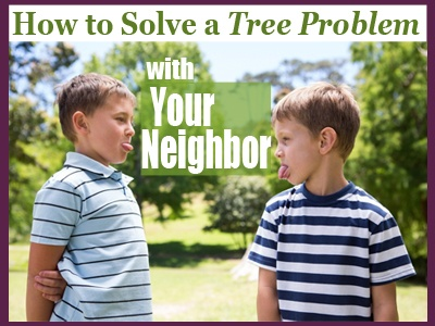 2018-How-To-Solve-A-Tree-Problem-With-Your-Neighbor-Header
