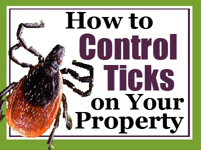 2018-How-to-Control-Ticks-on-Your-Property-Hubspot-Header-Image