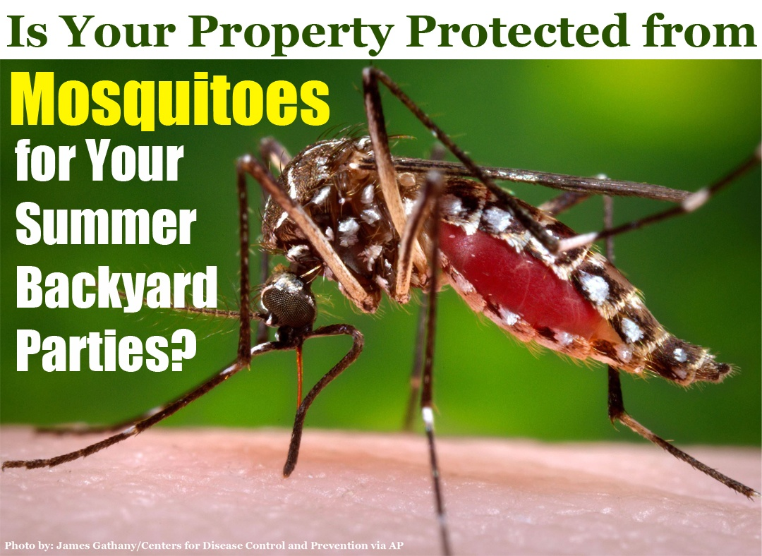 2018-Is-Your-Property-Protected-from-Mosquitoes-for-Your-Summer-Backyard-Parties