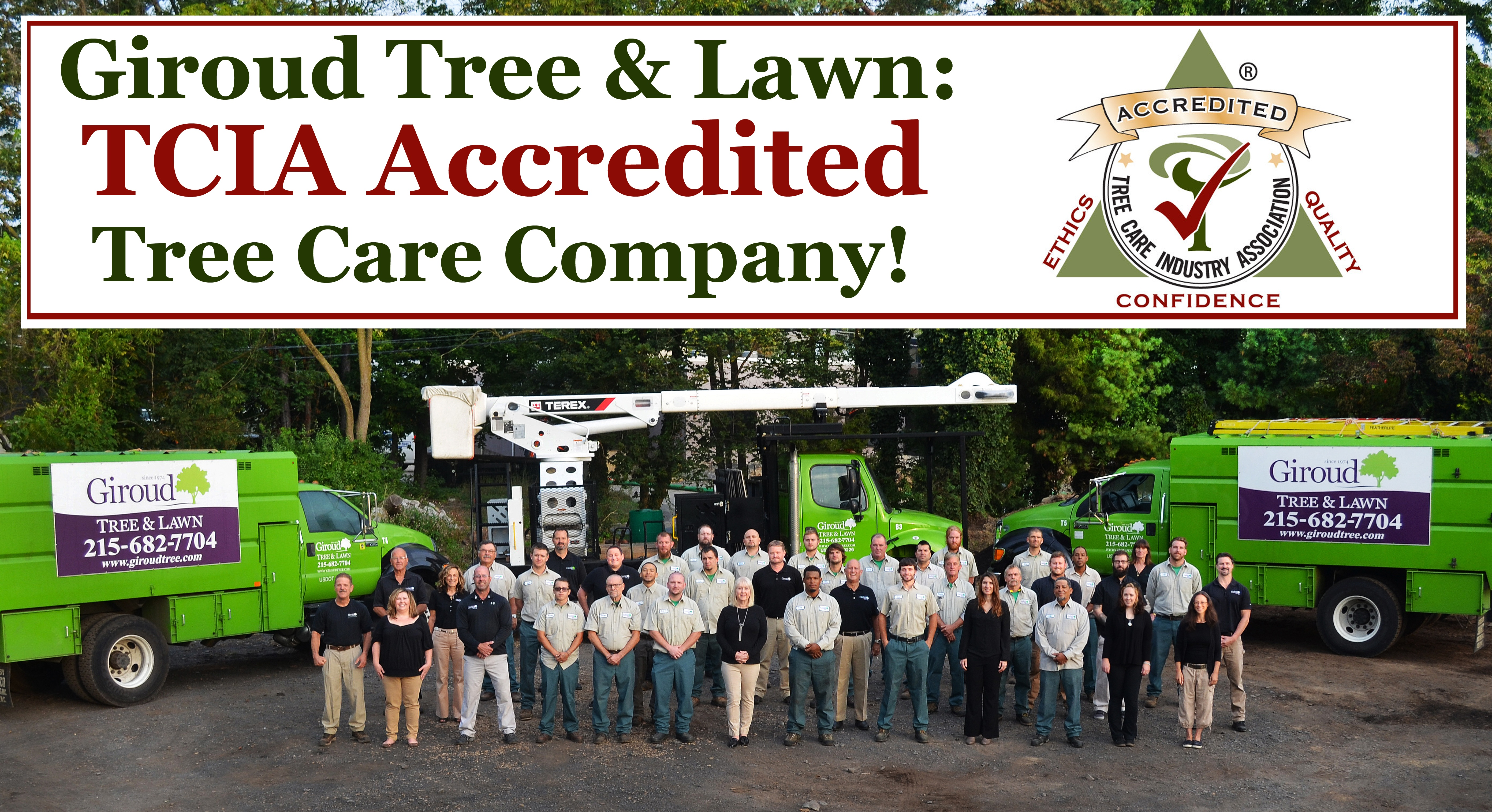 Giroud Tree & Lawn TCIA Accredited