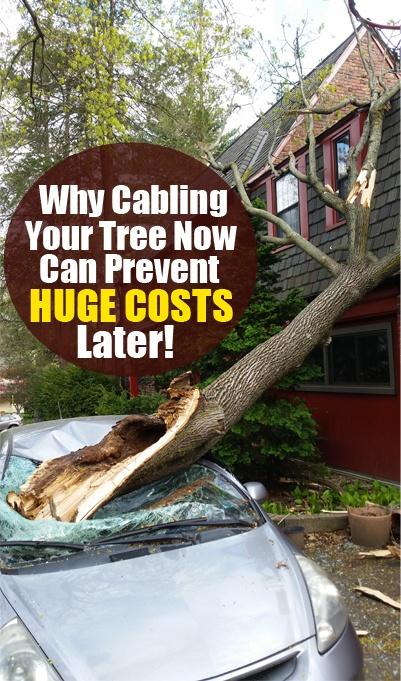 Cabling-Hubspot