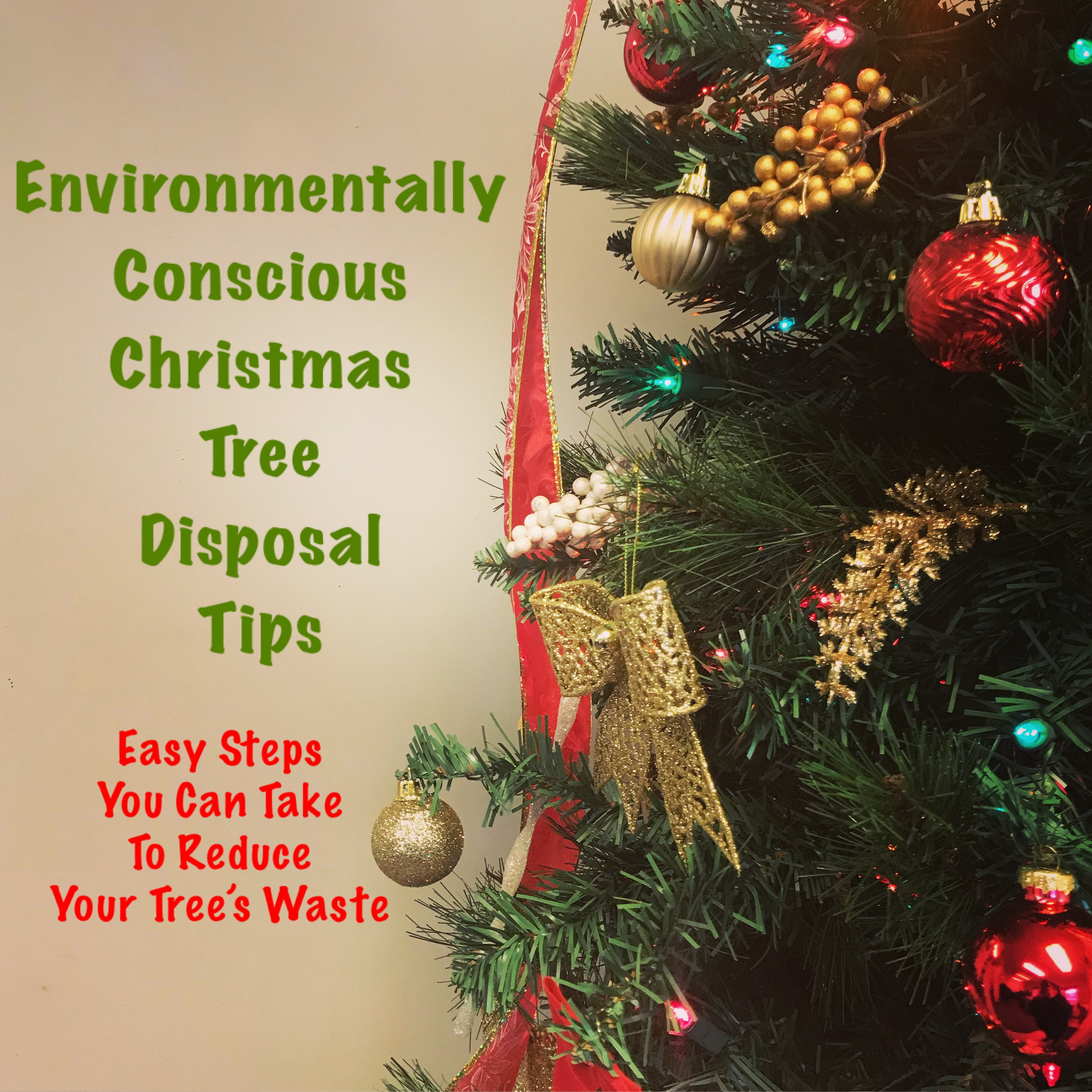 Environmentally Conscious Christmas Tree Disposal Tips.jpg