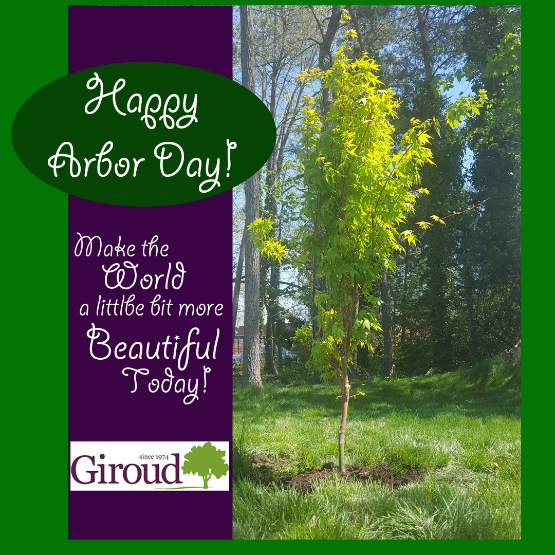 Arbor-Day