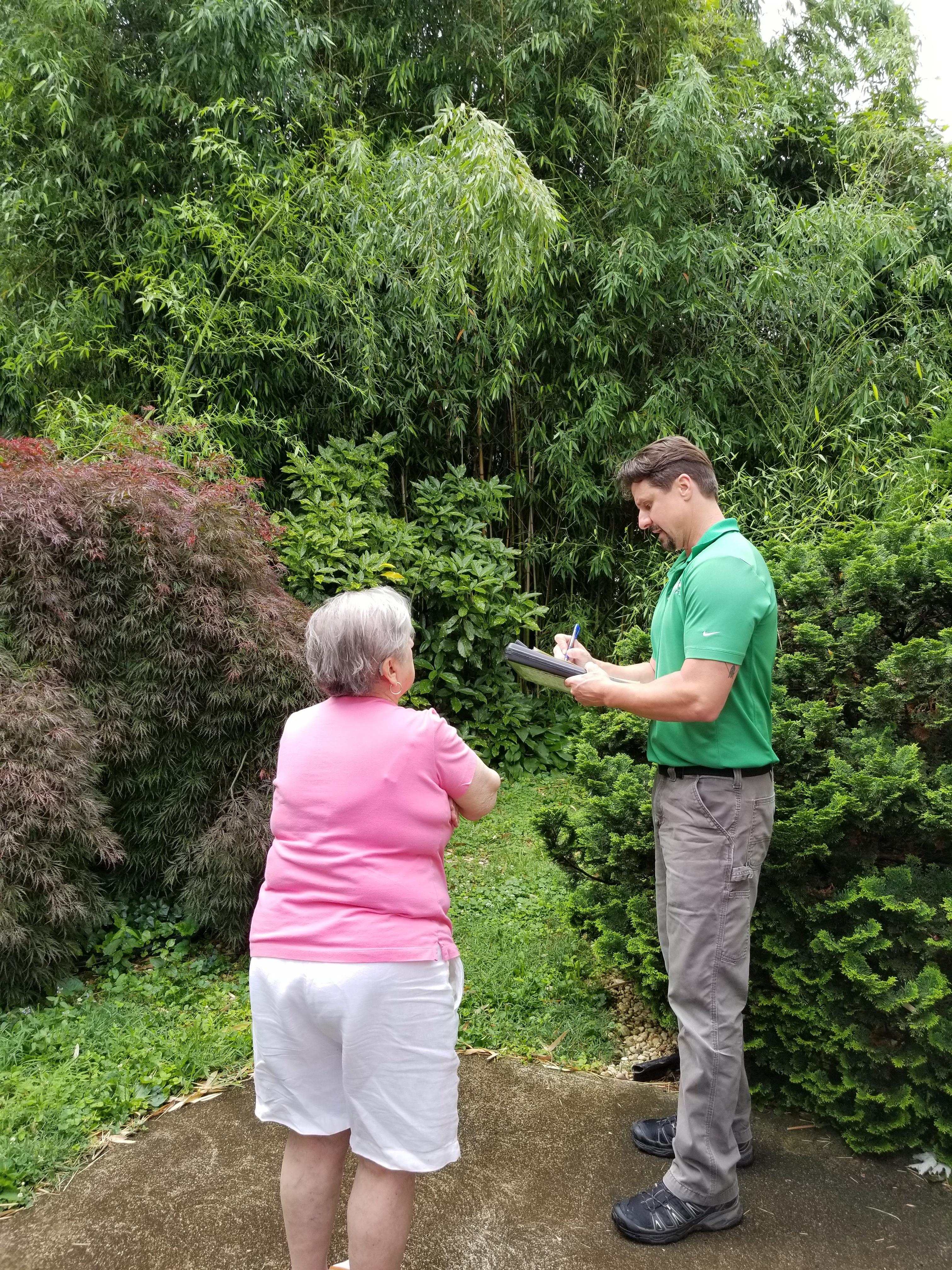 Tree Inspection ISA Certified Giroud Arborist Tree care