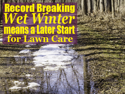 When to start treating your lawn